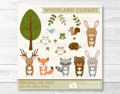 Woodland Themed Stickers Scrapbooking Craft 46 Pieces Acorn Toadstool Pine Cones