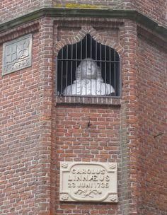 Borstbeeld Carolus Linnaeus uit 1869 gemaakt door Petrus Cornelius de Preter in de Academiestraat