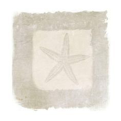 Marmont Hill Sea Star Irena Orlov Painting Print on Canvas 48 x 48 ($344) ❤ liked on Polyvore featuring home, home decor, wall art, canvas art, wall decor, beach home decor, beach paintings, beach scene wall art, beach canvas wall art and starfish wall art