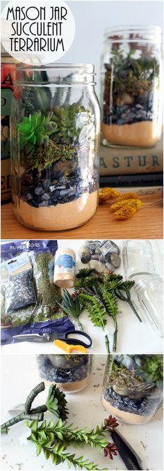 Succulent Mason Jar Terrarium                                                                                                                                                                                 More