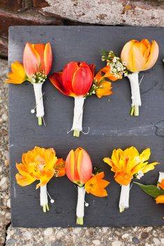 Bright Orange Tulip Boutonnieres! Adeline & Grace Photography - adelineandgrace.com  See More: http://www.stylemepretty.com/california-weddings/2015/05/19/bright-cheerful-winery-wedding/