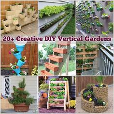 Spring is here! Now is the perfect time to grow your plants. Whether you live in an apartment orhave a small yard that doesn't seem to be large enough for a garden, here is a great space saving solution for you: make vertical gardens! If you can't go horizontally, just …