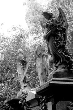 angels in Abney Park cemetery
