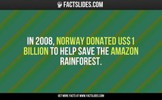 In 2008, Norway donated US$1 billion to help save the Amazon rainforest.
