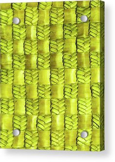 Flax Shower Curtain featuring the photograph Weaving Flax - Lemon/lime by Wairua o te Moana Gold Shower Curtain, Shower Curtains, Canvas Art, Canvas Prints, Art Prints, Thing 1, Acrylic Sheets, Curtains For Sale, Pillow Sale