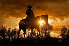 Sunset cowboy on horseback