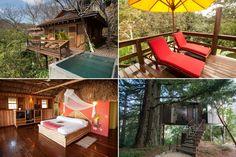 Sleep Like a Monkey: Nine Highflying Tree House Hotels (Photos)
