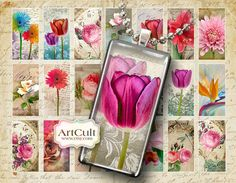 MAGIC GARDEN - 1x2 Inch Digital Collage Sheet Printable Jpg images for domino pendants magnets paper craft