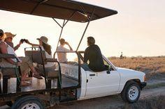 Book a game drive through the Villiera Wildlife Sanctuary. #Villiera #BubblySafari