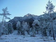 Panoramio - Photos by Ingrid Millinger > Waidring Apartments, Mountains, Nature, Photos, Travel, Outdoor, Interesting Facts, Outdoors, Naturaleza