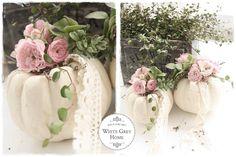 Witte pompoen met roos