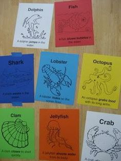 Movement Words ocean animal movement cards