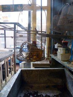 #workinprogress  #artisan #soho #lighting #antique #vintage #renovation #repair #workshop #forsale
