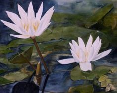 Water Lily Landscape Botanical Flower Watercolor Painting Giclee Print by…