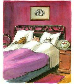 Illustration by Roger Tetsu of a man sleeping with his dog and cat (and they have the pillows! Image Chat, Tetsu, Sleeping Dogs, Whimsical Art, Dog Art, Good Night Sleep, Crazy Cats, Cute Art, Cats And Kittens