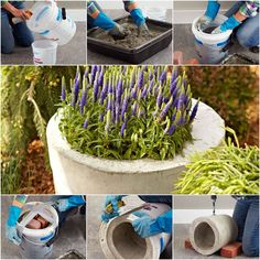 How to DIY Concrete Garden Planter | iCreativeIdeas.com Follow Us on Facebook --> https://www.facebook.com/icreativeideas