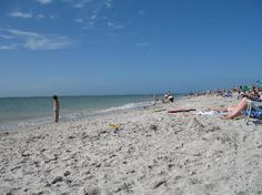 cape coral florida | My little piece of paradise - Review of Cape Coral, FL - TripAdvisor