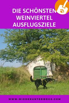 Weinviertel am Weekend. Vienna, Austria, Road Trip, Places To Visit, Journey, House Styles, Holiday, Nature, Photography