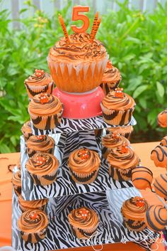 tiger cake cupcakes