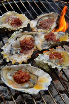 Grilled Oysters with Chorizo Butter. The spiced butter smooths out the oysters' sharp brininess & the chorizo offers a hint of sweet smoke.