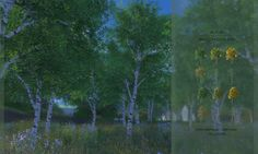Sims 4   Default Replacement Birch Trees for WIndenburg #Alfsi EP02 Get Together visual details plant override