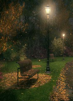 This reminds me of Narnia... Late Night In Rainy October Park