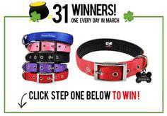 31 WINNERS! Each daily winner receives One laser engraved pet... sweepstakes IFTTT reddit giveaways freebies contests