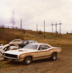 70's Street Machines : Photo