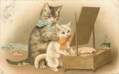 cat sitting holding kitten,both  looking in mirror, H. Maguire
