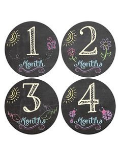 Baby Monthly Stickers - Chalkboard butterfly, flower, lady bug - 1-12 Girl Month Stickers on Etsy, $11.00