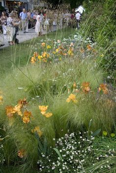 I love this - love the iris colors, love the little flowers popping up, love fluffy grasses.  More meadow inspiration (Chelsea 2007)