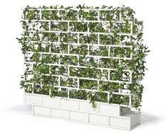 vertical garden balcony ideas small balcony decoration ideas trelis