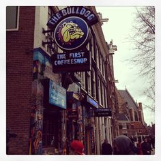 The Bulldog Cafe  Amsterdam,The Netherlands
