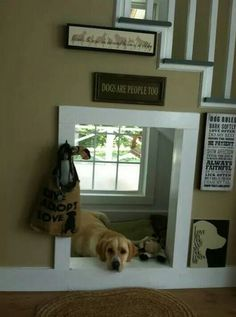I will have something like this in my future home for my pups ☺