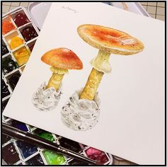 Keep going.... Built my own fungus forest. #linchianing #fungus #fungi #watercolor #watercolors #watercolorpainting