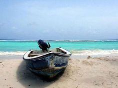 'A growing number follow the locals to the east, a place of wild beauty' - Traveller's guide: Barbados - The Independent