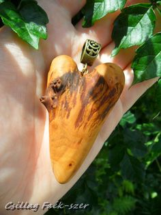 aple wood pendant Insects, Pendant, Wood, Jewelry, Jewlery, Woodwind Instrument, Jewerly, Hang Tags, Timber Wood