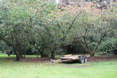 L1M1AP1:Landscape shot taken in Auto Mode crouching hand held  Aperture:5.6  ISO:100  Shutter speed:1/60