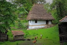 Doi bătrâni Medieval Houses, Vernacular Architecture, Traditional House, Old Houses, Painting Inspiration, Countryside, Earth, House Design, Vacation