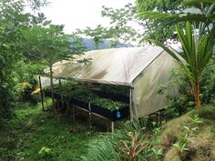 Have you always wanted to grow your own food? Greenhouse in Dominical Costa Rica for sale
