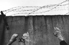 Hands of East & West Germans are seen tearing down barbed wire from the top of the wall at the newly opened ostpreussendamm strasse checkpoint in Berlin West Germany James Nachtwey James Nachtwey, War Photography, Documentary Photography, Salvador, History Magazine, The Man From Uncle, Berlin Wall, Barbed Wire, Tear Down