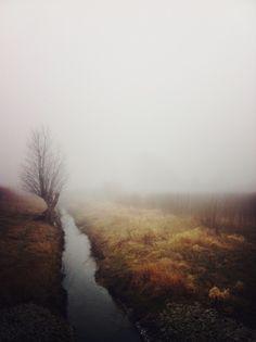 thick fog, autumn field, stream