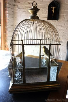 Antiques Atlas - Architectural Bird Cage With Taxidermy Canaries