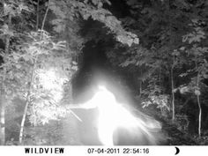 """Coast To Coast AM guest Dingo, a law enforcement officer from Georgia, posted this eerie image under the headline """"Strange Figure on Wildlife Camera"""". According to Dingo, he and another officer responded to a call about hunters trespassing on private property. The officers were unable to locate the suspects. The next day the property owners set up a infrared wildlife camera in an attempt to catch the trespassers. They seem to have captured something else instead."""