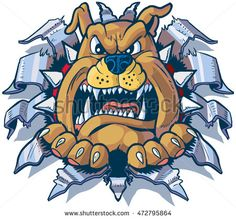 #Vector #cartoon #clipart #illustration of an angry #bulldog with a #spikedcollar #ripping, #punching, or #tearing through #sheetmetal.