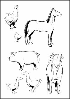 baby farm animal coloring pages free online printable coloring pages, sheets for kids. Get the latest free baby farm animal coloring pages images, favorite coloring pages to print online by ONLY COLORING PAGES. Farm Animals Preschool, Farm Animal Toys, Baby Farm Animals, Preschool Ideas, Zoo Animal Coloring Pages, Farm Animal Coloring Pages, Preschool Coloring Pages, Arctic Animals, Zoo Animals