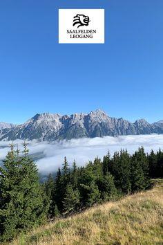 Wunderschöner Ausblick auf die Leoganger Steinberge. Wanderung Saalachtaler Höhenweg WEST vom Asitz zum Spielbergtörl. Outdoor, Mountains, Nature, Travel, Climbing, Alps, Hiking, Outdoors, Naturaleza
