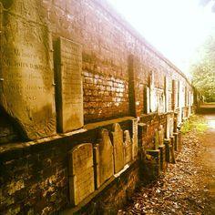 Spooky Colonial Park