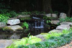 29 Koi Ideas Koi Pond Water Garden Koi