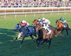 The Club Racing, Allen Rosenblum, and Sagamore Farm's Miss Temple City earned her second grade I victory against males Oct. 8 in the $1 million Shadwell Turf Mile (gr. IT)  at Keeneland.